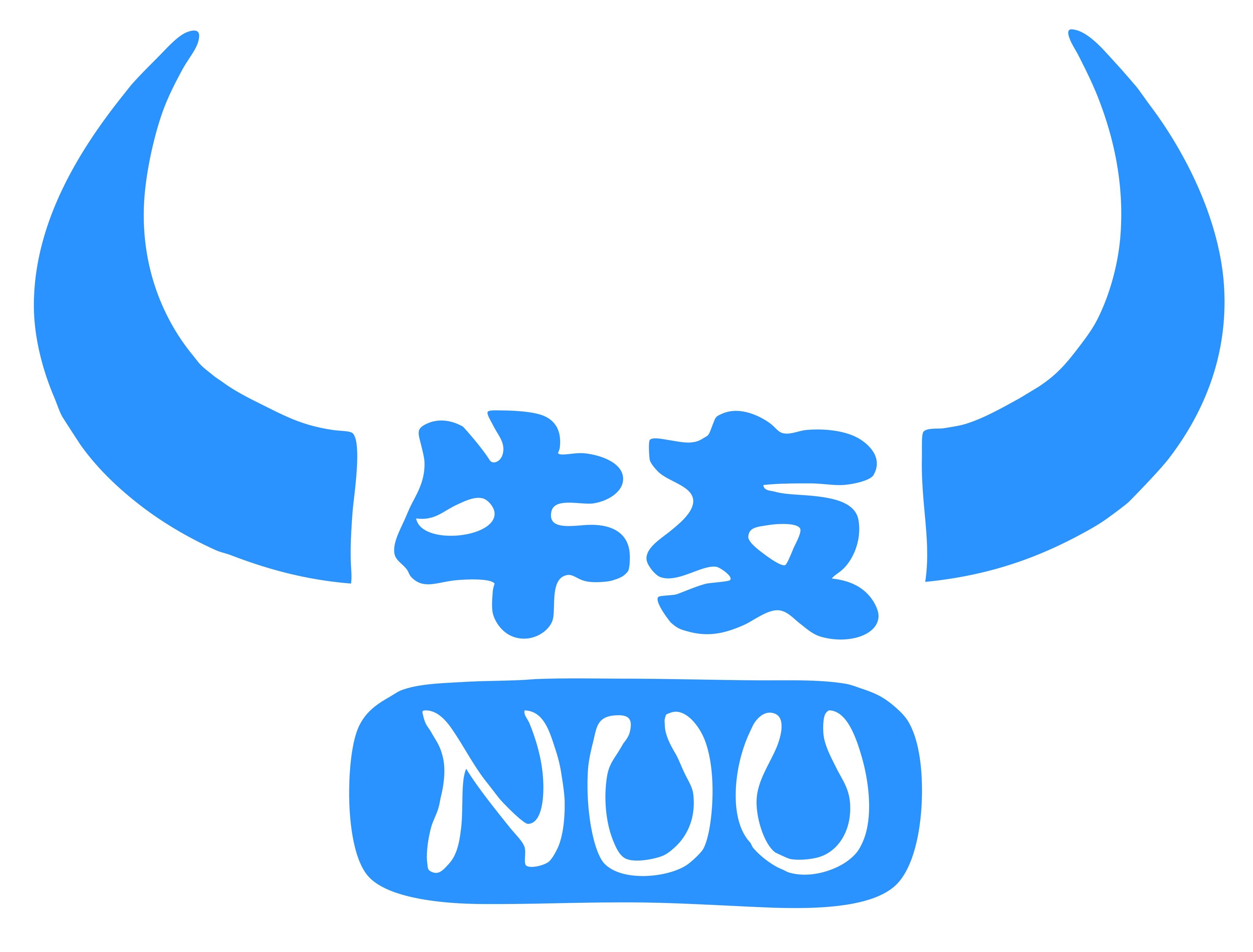 南京牛友信息技术有限公司